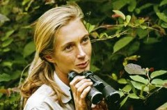Jane Goodall, National Geographic,Robert Ballard,James Cameron, programmi tv